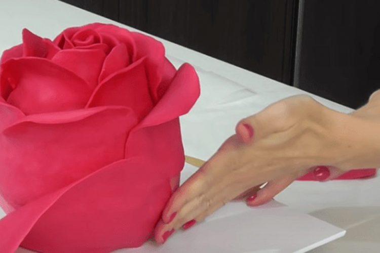 Krásný dort ve tvaru růže – video-návod
